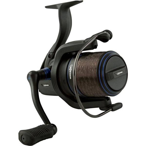 Moulinet daiwa - critique